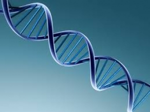 The future of DNA profiling – how will it affect your cases?