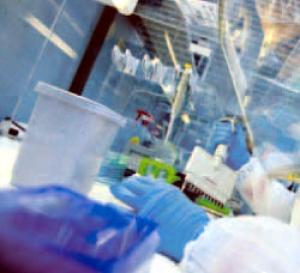 DNA Lab Blunder
